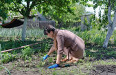 Woman working in the vegetable garden — Stock Photo