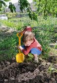 Little boy planting vegetables — Stock Photo