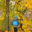 Child standing in colourful autumn woodland — Stock Photo