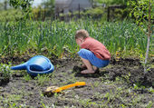 Little boy digging in the vegetable garden — Stockfoto