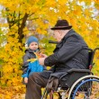 Elderly disabled man playing with his grandson — Stock Photo #33867203