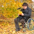 Disabled man in a wheelchair collecting leaves — Stock Photo