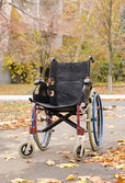 One wheelchair outdoors in the park — Stock Photo