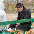 Elderly man enjoying a game of chess in the park — Stock Photo #35585069