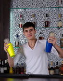 Young barman shaking two cocktail shakers — Stockfoto