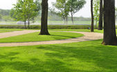 Woodland park with manicured lawns and a road — Stock Photo