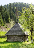 Quaint timber cabin with wooden shingles — Zdjęcie stockowe