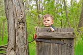 Cute little boy peering over an old wooden gate — Stock Photo