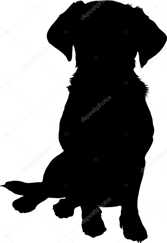 A black silhouette image of a puppy sitting facing the viewer.  Stock Vector #15913967
