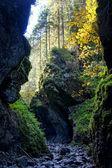 Cracow gorge in Tatras Mountains, Poland — Stock Photo