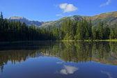 Reflection on Smreczynski lake in Koscieliska Valley, Tatras Mountains in Poland — Stock Photo