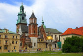 Wawel Cathedral on the Wawel Hill in Krakow (Cracow) — Stock Photo
