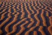 Desert landscape, Gobi desert, Mongolia — Stock Photo