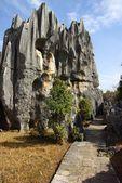 Floresta de pedra de Shilin em kunming, na província de yunnan, china — Fotografia Stock