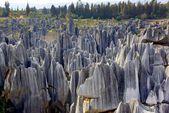 Shilin steinernen wald in kunming, provinz yunnan, china — Stockfoto