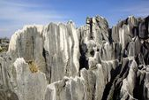 Shilin Stone Forest in Kunming, Yunnan province, China — Stock Photo