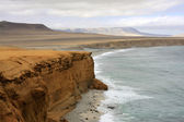Cliff coast of Atacama desert near Paracas in Peru — ストック写真