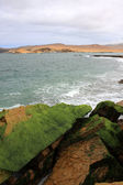 Cliff coast of Atacama desert near Paracas in Peru — Stok fotoğraf