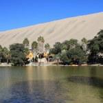 Oasis de huacachina dans le désert d'atacama, Pérou — Photo #44081037