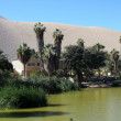 Oasis of Huacachina in Atacama desert, Peru — Stock Photo