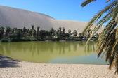 Oasis of Huacachina in Atacama desert, Peru — Foto de Stock