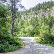 Black Hills in South Dakota — Stock Photo