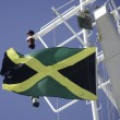 JamaicFlag — Stock Photo #12838730