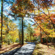 Fall in North Carolina - Stock Photo