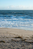 Beach at Sebastian, Florida — Stock Photo