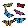 Colored butterflies — Stock Vector #12035052