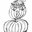 Sketch of pumpkin — Stock Photo