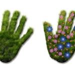 Hand print of grass — Stock Photo