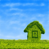 Green grass field house — Stock Photo