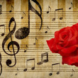 Rose red and notes — Stock Photo