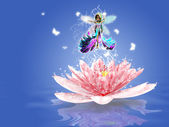 Water Lily fairy — Stock Photo