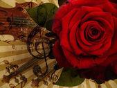 音楽のバラとバイオリンの背景 — ストック写真