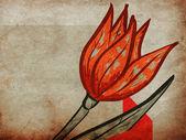 Red tulip on grunge background — Stock Photo