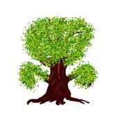 Fantezi yaz ağaç — Stok fotoğraf