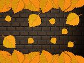 叶子和砖墙 — 图库照片