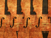 Violins in a row — Stock Photo