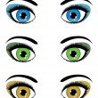 Female eyes - Stock Vector