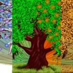 Four season tree — Stock Photo