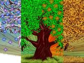 árbol de cuatro estaciones — Foto de Stock