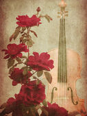 Red roses and violin — Stock Photo