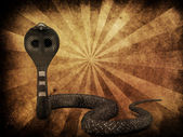 Cobra snake on grunge background — Foto de Stock