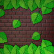 Green leaves and brick wall — Stock Photo #14751067