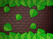 Green leaves and brick wall — Stock Photo