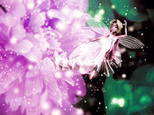 Fairy flower — Stock Photo