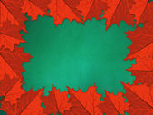 Chalkboard with red maple leaves — Stock Photo