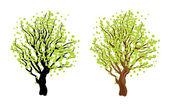Strom s listy — Stock vektor